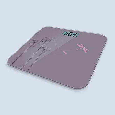 Picture for category Bathroom Scales